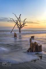 Bulls Island Sunset (APGougePhotography) Tags: sunset sun beach sc water island coast sand nikon wildlife south southcarolina bulls national carolina cape romain refuge topaz d600 denoise topazlabs nikond600 topazdenoise topazclarity