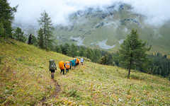 Multa-Tungur / Мульта-Тюнгур (Grigory Kolyadin) Tags: mountains tourism outdoor hike поход горы altay алтай туризм