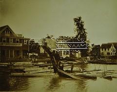 Oever Surinamerivier