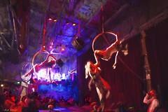 Acrobats! (All About Light!) Tags: performance nostalgia burlesque oilpainting thesoileddove