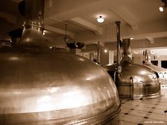 Netherlands - Amsterdam - Heineken Old Brewery (Marcial Bernabeu) Tags: holland netherlands amsterdam holanda pases bernabeu 2010 marcial paises bajos bernabu paisesbajos pasesbajos