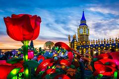 Around The World In 80 Minutes (mrperry) Tags: christmas winter roses london garden holidays bigben christmaslights sacramento winterwonderland calexpo 2014 globalwinterwonderland