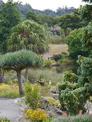 Auckland Botanical Gardens (Klene Hilda) Tags: aucklandbotanicalgardens