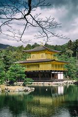Kinkaku-ji (www.danbouteiller.com) Tags: park lake tree castle japan canon eos japanese 50mm kyoto eau lac 50mm14 5d canon5d chateau arbre kinkakuji parc japon 5dmk2