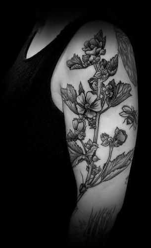 aurelio_tattoo_cle