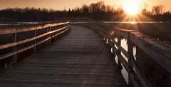 sunset on the boardwalk (marianna armata) Tags: park light sunset sun fence sundown boardwalk friday ilebizard hff mariannaarmata