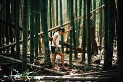 Exploring the bamboo forest. (lebramlett721) Tags: trees lensbaby forest nikon exploring bamboo d750 twist60