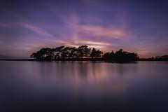 Pond Pastels. (muddlemaker1967) Tags: longexposure trees water silhouette clouds reflections lens landscape nikon colours wideangle hampshire pastels tamron 1735mm thenewforest d700