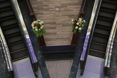Bi-escalator (Pi-F) Tags: fleur centre escalator double commercial deux bouquet escalier dcoration egypte coffeetime mcanique symtrie rptition