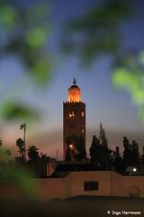 IMG_3952 - Tower of Koutoubia (Herrmaennchen) Tags: africa travel tower night canon nightlights nightshot northafrica minaret sigma mosque morocco marrakech maghreb marokko reise koutoubia nordafrika koutoubiamosque