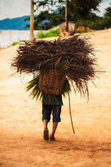 the loads we carry~ Yunnan (~mimo~) Tags: china woman grass walking basket yunnan load honghe mimokhairphotography
