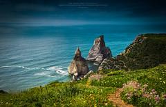 Ursa Upside (Luis Sousa Lobo) Tags: praia beach portugal canon cabo sintra cascais roca ursa 2470 70d