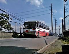 Santrans (Santa Cruz Line) (metrobus926_revival) Tags: condor santarosa sr ud sdx 7015 frontengine nissandiesel santrans cpb87n fe6b
