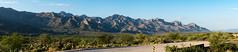 1607 Pusch Ridge from the Golder Ranch Area (c.miles) Tags: bighornmountain bustermountainl cathedralrock coronadonationalforest eastequestriantrail golderranch mountkimball puschpeak puschridge puschridgewilderness santacatalinamountains tablemountain