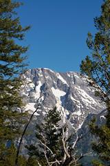 DSD_1278 (pezlud) Tags: tetons landscape national park nationalpark mountains grandtetonnationalpark tetonnationalpark snowcapped