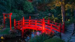 DSC05443 (regis.verger) Tags: temple zen nuit parc nocturne asiatique vgtal maulvrier
