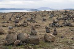 (CasualCapture) Tags: travel field landscape iceland stones thingvellir ingvellir rockpiles ingvellirnationalpark rockstacks