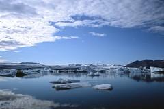 Iceland (Alessio Maffeis) Tags: travel film nature water analog iceland slide roadtrip reykjavik whales northern puffins islanda