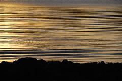 Golden Ripples, Loch Caroy - Isle of Skye (mpw1421) Tags: water golden scotland nikon isleofskye d60 scottishhighlands autumngold lochbracadale smallisles lochcaroy