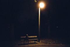 Lost (02) (romain@pola620) Tags: uk light london film night analog 35mm dark lost lights lomo lca lomography alone child darkness nightshot grain londonbynight nightime londres tungsten analogue grainy 35 800 argentique shotinthedark 800iso pellicule nightonearth analogique lomo800 cinéstill