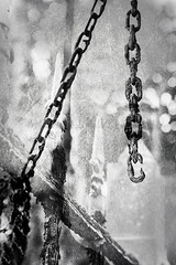 Noise (Marco Abud) Tags: nature rust dof porto steel natureza rusty grade depthoffield santos vida streetphoto noise litoral ferrugem profundidadedecampo montanhas corrente bertioga riscos javelin rustygate abud enferrujado baixadasantista fotografiaderua bertiogasp cidadelitoranea estnciabalneria marcoabudfotografia marcoabud abudfotografia portoenferrujado correnteenferrujada bertiogasantos microrregiodesantos municpiodeestnciabalneriabertioga