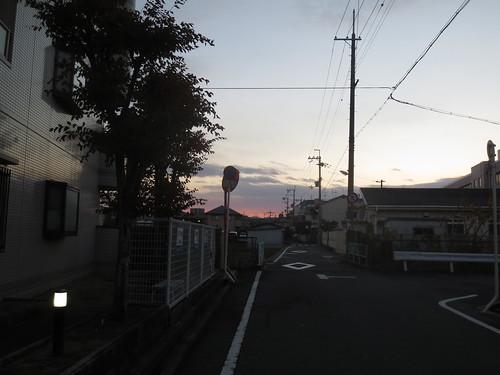 朝が明けてきました