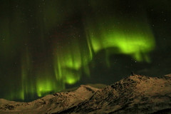Northern Lights Aurora Borealis, Kavaloya Island, Norway (David Alexander Elder) Tags: cruise november sky david norway circle island lights norge search arctic aurora elder fred alexander polar northern olsen borealis tromso boudicca 2014 in aurorae kavaloya