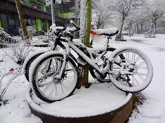 Too cold to ride bicycles (Itsnotme!) Tags: winter snow cold ice germany frost hessen freezing bicycles darmstadt karlshof hesse