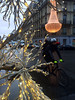 he saw two large Will-o'-wisps, hovering to and fro on his boat (bernawy hugues kossi huo) Tags: paris jackolantern wisp irrlichter feuxfollets
