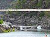 ALEXANDER SUSPENSION BRIDGE, FIRST BASIN (Rose Frankcombe) Tags: australia tasmania launceston cataractgorge firstbasin rosefrankcombe alexandersuspensionbridge