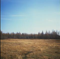 Pionerskoe Lake (RDAYZ) Tags: 120 6x6 film nature field analog rolleiflex fuji north fujifilm medium format provia yakutia 2014 100f tessar sakha rdayz