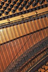 AD8A7448_au_g (thebiblioholic) Tags: piano strings deconstruction