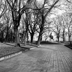 a lonely park (Guy Fawkes Jr.) Tags: road trees winter blackandwhite bw tree 6x6 tlr monument contrast analog vintage mediumformat square landscape outdoor grain naturallight 120film negative scanned rodinal citypark nofilter rollfilm classiccamera yashica635 chernihiv selfdevelop classicblackwhite epsonv700 oldschoolphotography yashinon80mmf35 film:iso=100 manualfocuslenses shanghaigp3100 фотопленка developer:brand=agfa developer:name=agfarodinal film:brand=shanghai film:name=shanghaigp3100 sgpff
