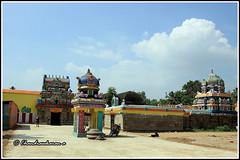 4782 - Saptha Sthana Sthalangal Series 06 (chandrasekaran a 30 lakhs views Thanks to all) Tags: flowers india heritage fruits architecture temple rice culture traditions temples jewels hinduism tamilnadu ghee gopurams thiruvaiyaru arulmigu kandiyur sundarar  thevaram sotruthurai  aiyarappan panchanatheeswarar poonthuruthi sapthasthanasthalangal vedikudi  vedicpandits sevensacredtemples thiruvaiyarutemple neithanam pazhanam