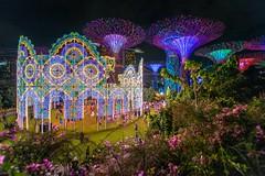 Christmas Wonderland @ Garden By The Bay Singapore (BP Chua) Tags: travel night garden landscape photography nikon singapore tourist attraction marinabay 1424mm gardenbythebay d800e