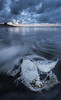 Dead seabird at Hukuaai Beach, Opotiki (JoshyWindsor) Tags: longexposure newzealand summer water clouds landscape dead twilight holidays dusk motionblur northisland seabird bayofplenty opotiki canonef1740mmf4l canoneos6d hukuaaibeach