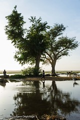 Le fleuve Niger (DeGust) Tags: africa water niger river agua eau ne westafrica westafrika fleuve afrique nigerriver ner  afriquedelouest fleuveniger   ronger  libor
