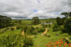 DSC_4675 (H Sinica) Tags: newzealand waikato northisland matamata