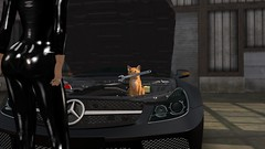 I haz yor oils chaenged soon okai? (alexandriabrangwin) Tags: world black silly cat computer ginger 3d graphics funny shiny shot garage butt twin glossy turbo secondlife virtual mercedesbenz latex casual language mechanic roscoe speak polished catsuit amg sl65 cgi v12 biturbo spanner lolcat alexandriabrangwin