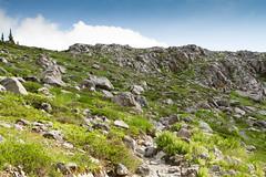 Marci in a Boulder Filled Meadow (jpmckenna - Northern Plains Tour Coming Up) Tags: hiking northcascades getoutside hikingwashington washingtontrails lakeanntrail mtbakernationalrecreationarea mypubliclands