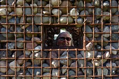 Surrounded By Rocks (ricko) Tags: laura window rocks sister surrounded wiremesh