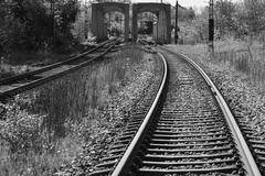 On my way (tusenord) Tags: bw monochrome train railway tunnel väg svartvit tåg järnväg fotosondag fs160515