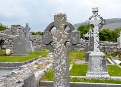 Corcomroe Abbey II (N. S. Gittings) Tags: ireland countyclare corcomroeabbey tamron18270mm nikond7000