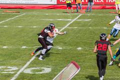 GFL-2016-Panther-9848.jpg (sgh-fotos) Tags: football nfl bowl german panthers sack dsseldorf touchdown defence invaders hildesheim dline fumble gfl amarican quaterback oline interception ofence