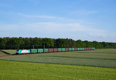 E 186 243(270 001) VPS (Daniel Powalka) Tags: panorama tree train germany landscape deutschland photography photo nikon flickr track foto fotograf fotografie photographer photographie photos natur award himmel eisenbahn rail railway zug loco cargo iso container fotos d750 grn nikkor bahn landschaft railways sonne wald verkehr trainspotting spotting wetter railroads artland landschaften lokomotive schiene trainspotter traxx strecke badenwrttemberg gterzug objektiv lokomotiven elok grabenneudorf vectron gterverkehr getreidefelder lokfhrer br186 kbs700 nikond750