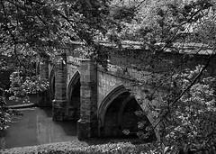 Old stone bridge (V Photography and Art) Tags: bridge trees texture stone mono stream arch blossom arches stonebridge