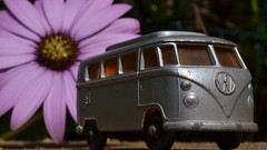 Back to the Garden (mitchell_dawn) Tags: flower classic vw vintage garden volkswagen toys 60s hippy 1960s africandaisy camper sixties flowerpower toycar campervan aircooled matchboxcars