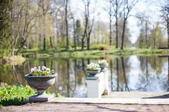 IMG_7560-2 (greta&eos) Tags: park lake flower nature pots manor