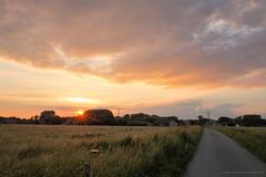 Sunset in the countryside (Laurent Castiau) Tags: road sunset sky orange clouds contrast canon countryside belgium belgique depthoffield route ciel contraste nuages campagne contrejour coucherdesoleil goldenlight againstthelight canoncamera canonlens profondeurdechamp lumiredore