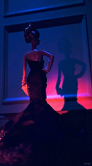 Midnight Hour (psiscott) Tags: art fashion mystery toy photography doll dress barbie gown elegant couture collector toyphotography silkstone
